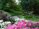 Majowe Arboretum