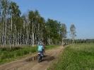 Rower Wrzosowy